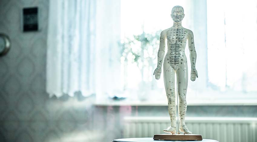 Image of acupuncture statue in a clinic